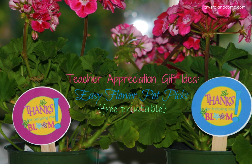 graphic about Thanks for Helping Me Bloom Printable called Instructor Appreciation: Due for Supporting me Bloom Flower Pot