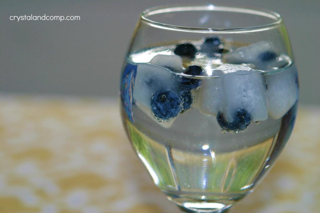 frozed fruit ice cubes