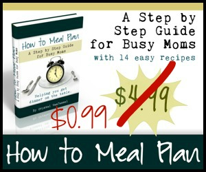 how to meal plan $.99