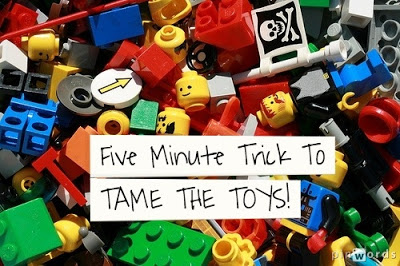 tame the toys