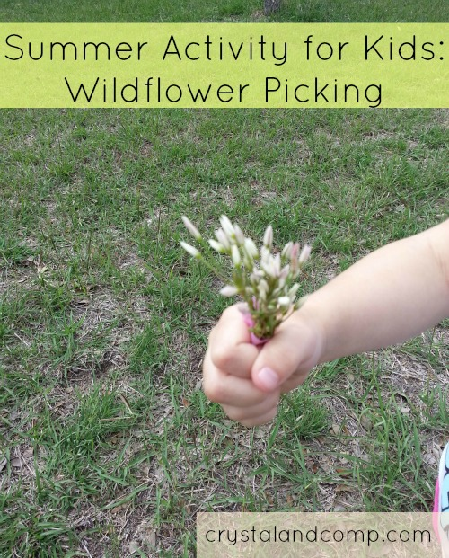 Summer Activities for Kids wildflower picking