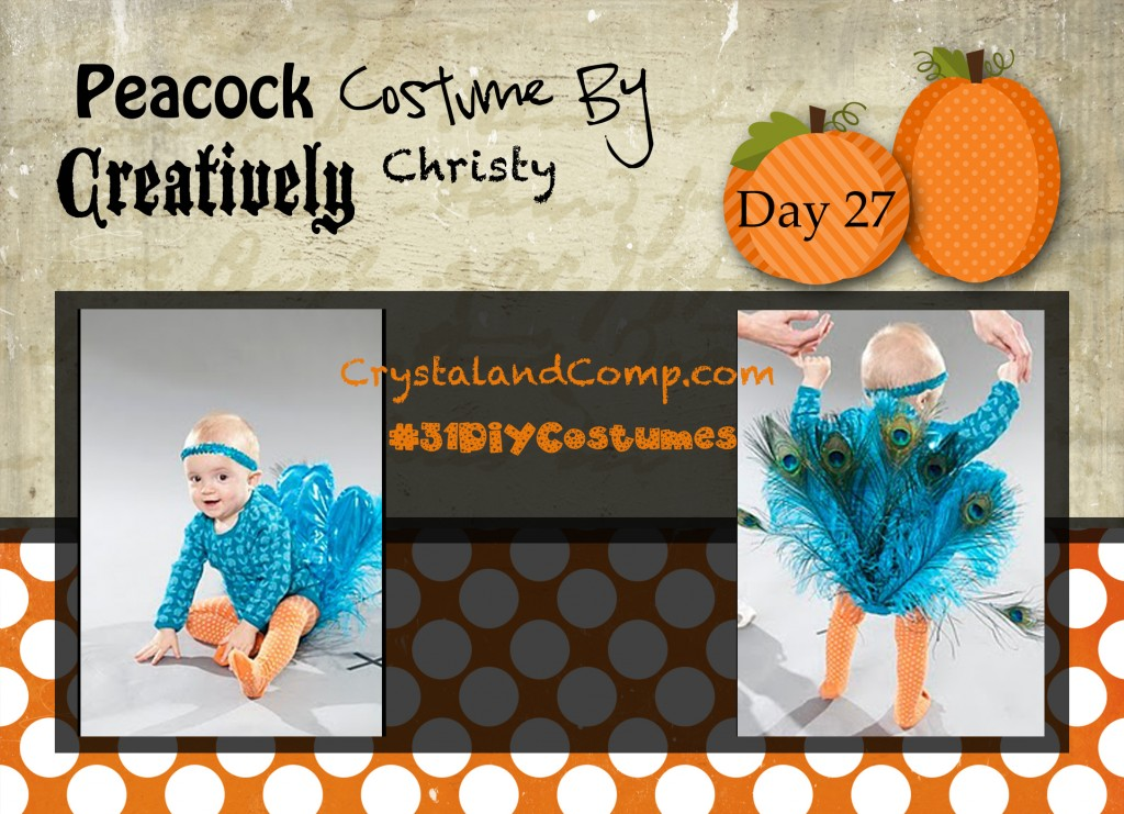 DIY Halloween Costumes: Peacock Costume