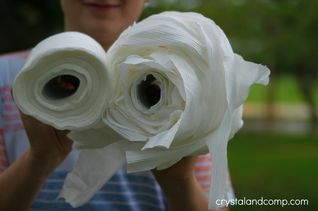 toilet paper relay