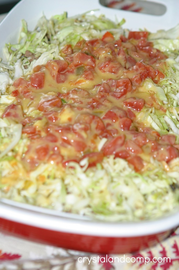 rotel and cream of chicken soup mixture